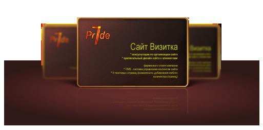 vizitka_site